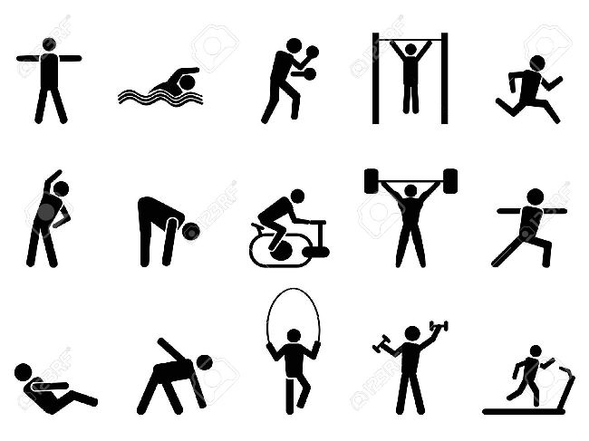 Exercise Physical Education Fitness