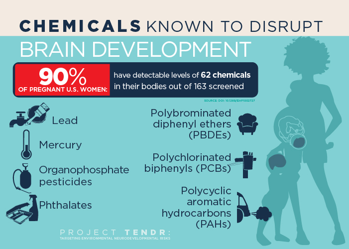 Chemicals that Endanger Child Brain Development