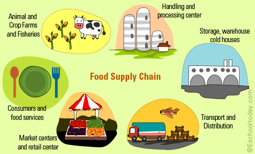 a discussion of food supply and consumption amidst the growing global population Population and the environment: the global growing faster than food supplies population pressures consumption growth and population growth and.