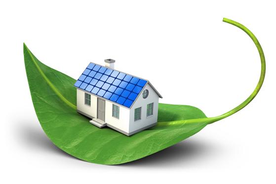 Home On Green Leaf