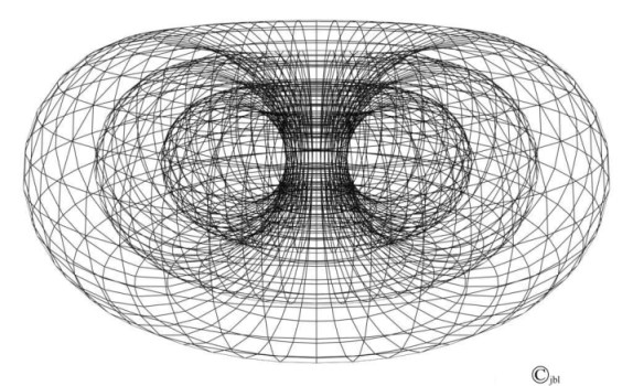Primary Connection Torus